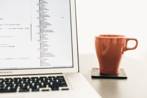 buy or build custom software development